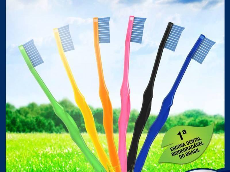 Escova dental biodegradável