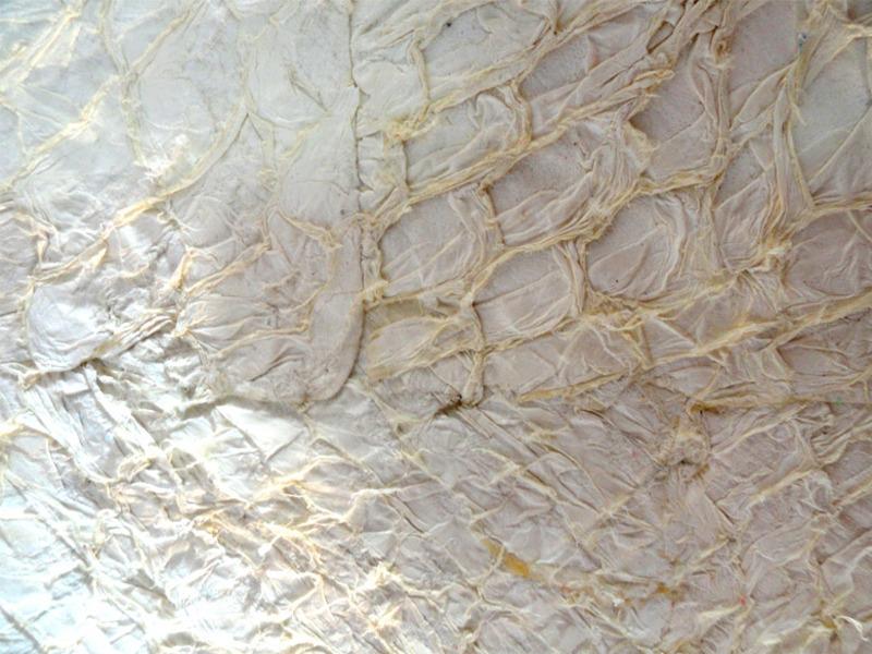 Placa de couro pescada