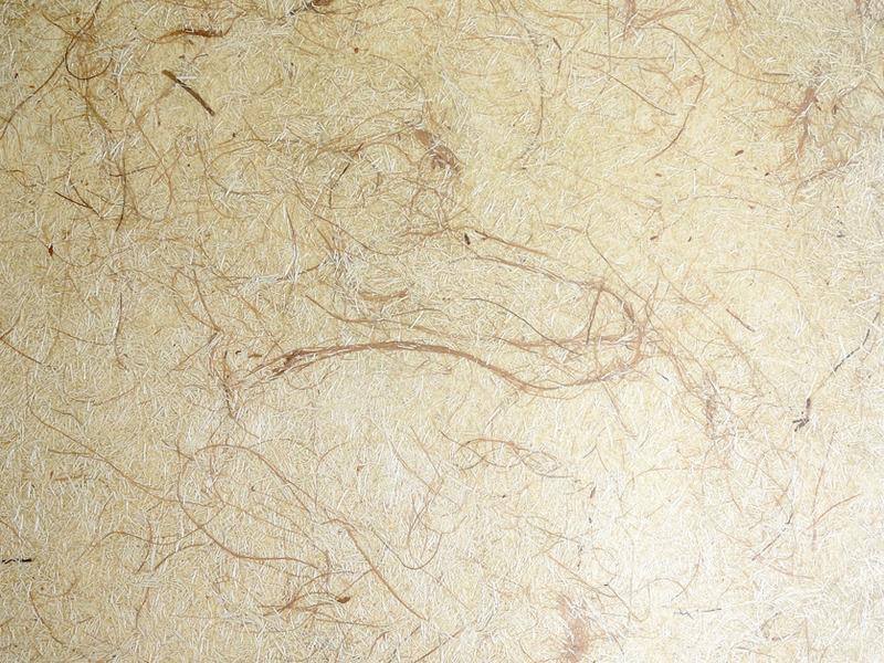 Laminado estrutural de fibras vegetais